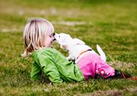 morsure, chien, chat, désinfecter, vaccin contre la rage, vaccin contre le tétanos