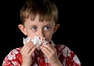 saigne du nez, sang, hydrater le nez, mèche hémostatique, arrêter le saignement de nez
